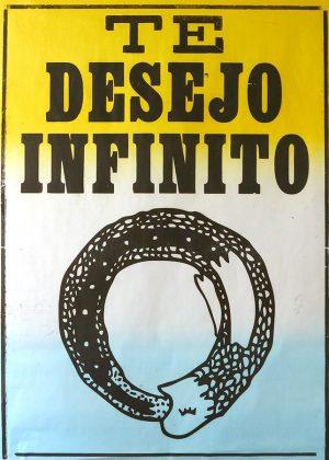 poster te desejo infinito